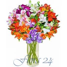 Доставка цветов в г.южноукраинск супер акция доставка цветов nationalflowers ru hugar.htm